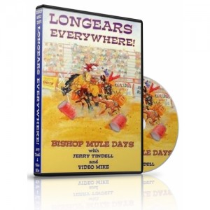Long Ears Everywhere Dvd-500x500