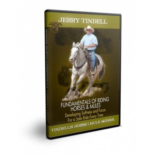 fundamentals of riding dvd