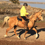 woman in yellow jacket on a horse