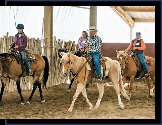 progressive horsemanship training
