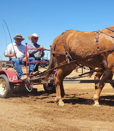 horses pulling two men