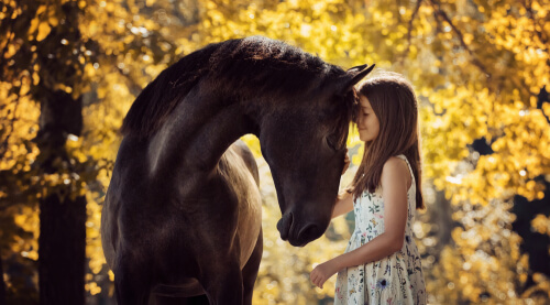young girl and horse touching foreheads